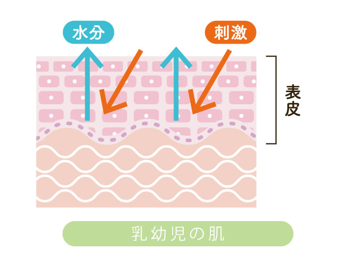 乳幼児の肌
