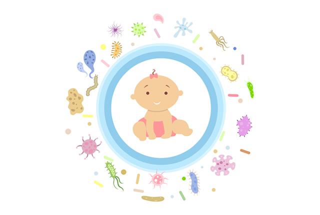 菌から守られている赤ちゃん