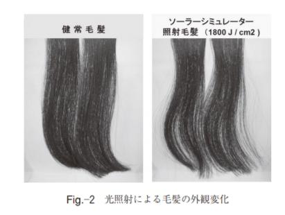 光照射による毛髪外観変化